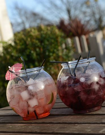 Try our Fishbowls!