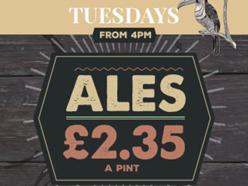 Ale Tuesdays