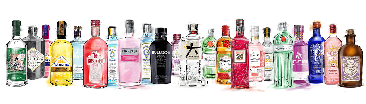 a Selection of Gin bottles